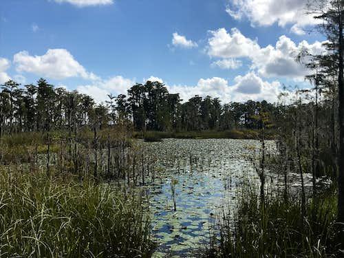 2018 Florida Adventures