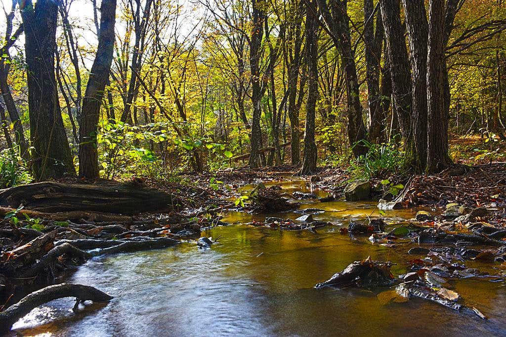A creek below Beka village