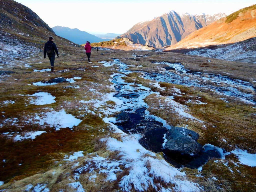 Headed down over a frozen meadow