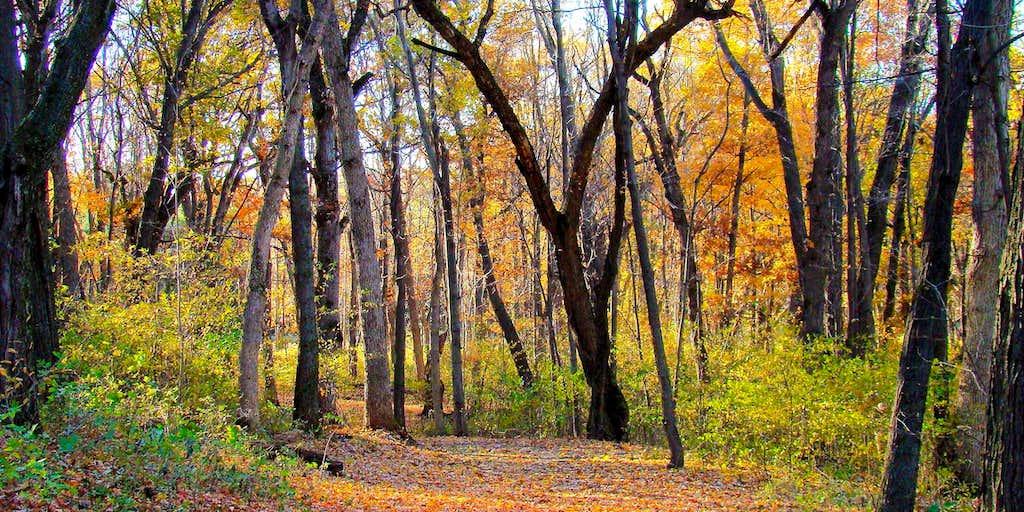Wisconsin Trails