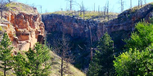 Canyon in the Southern Black Hills