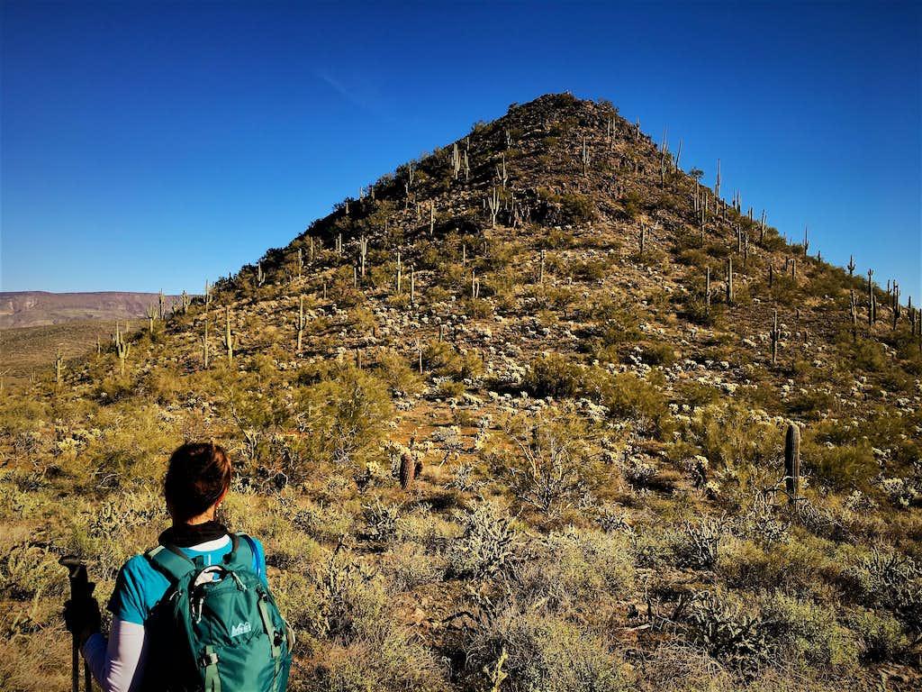Walking towards East Apache Peak