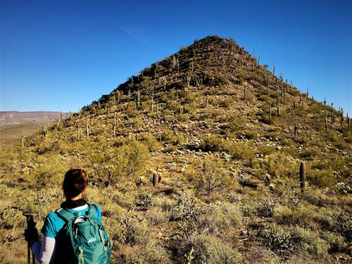 Walking towards East Apache Peak