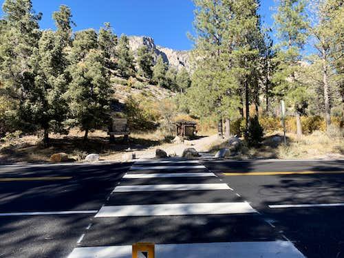 Fletcher Canyon Trail