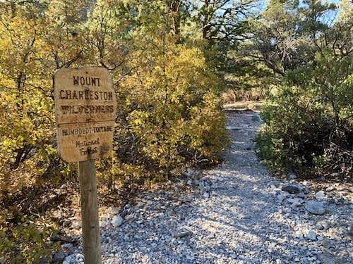 Mt Charleston Wilderness Area Sign on Fletcher Canyon Trail