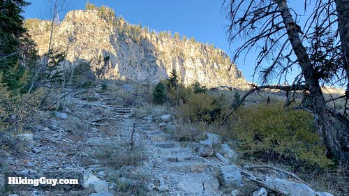 Echo Cliffs As Seen From South Loop Trail to Charleston Peak
