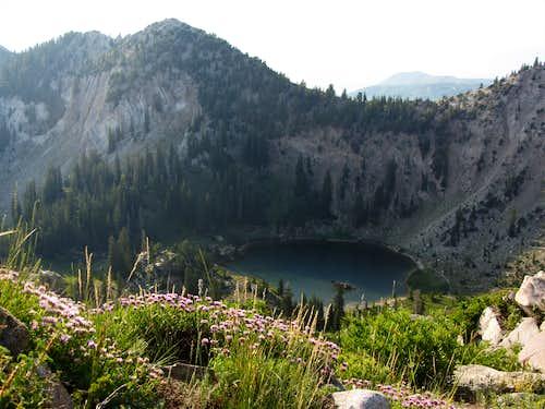 Pioneer Peak over Lake Catherine