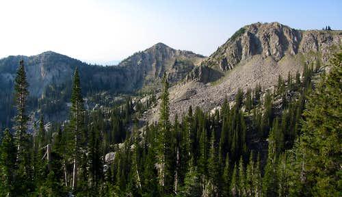 Pioneer Peak, Sunset Peak, & Mount Tuscarora from Mount Millicent