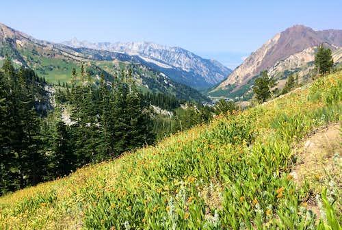 Trail below Honeycomb Cliffs