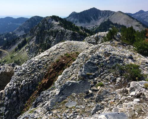 Honeycomb Cliffs summit view