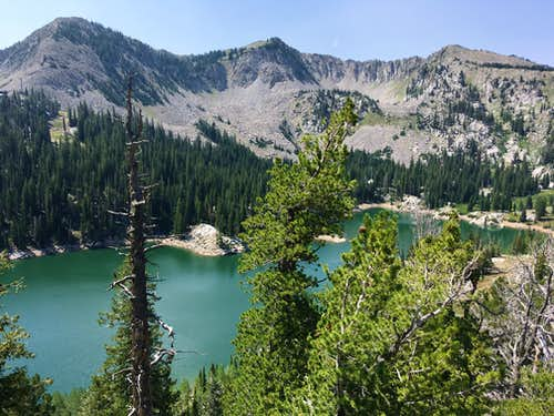 Millicent, Wolverine, & Patsy Marley over Twin Lakes Reservoir