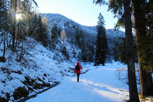 Xmas in Ruhpolding: Descending the Schwarzachen valley.