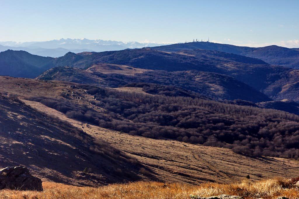 Western Ligurian Apennine and Maritime Alps from Monte Reixa