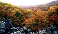 Fall Colors from the top of...
