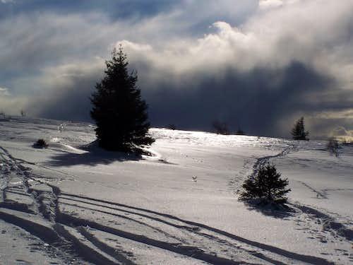 On the summit of Hohenwart