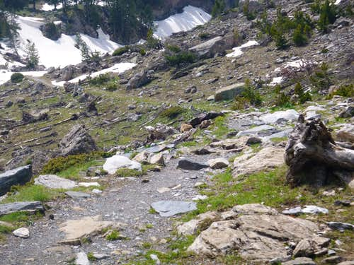 33 The trail back down with Marmots.