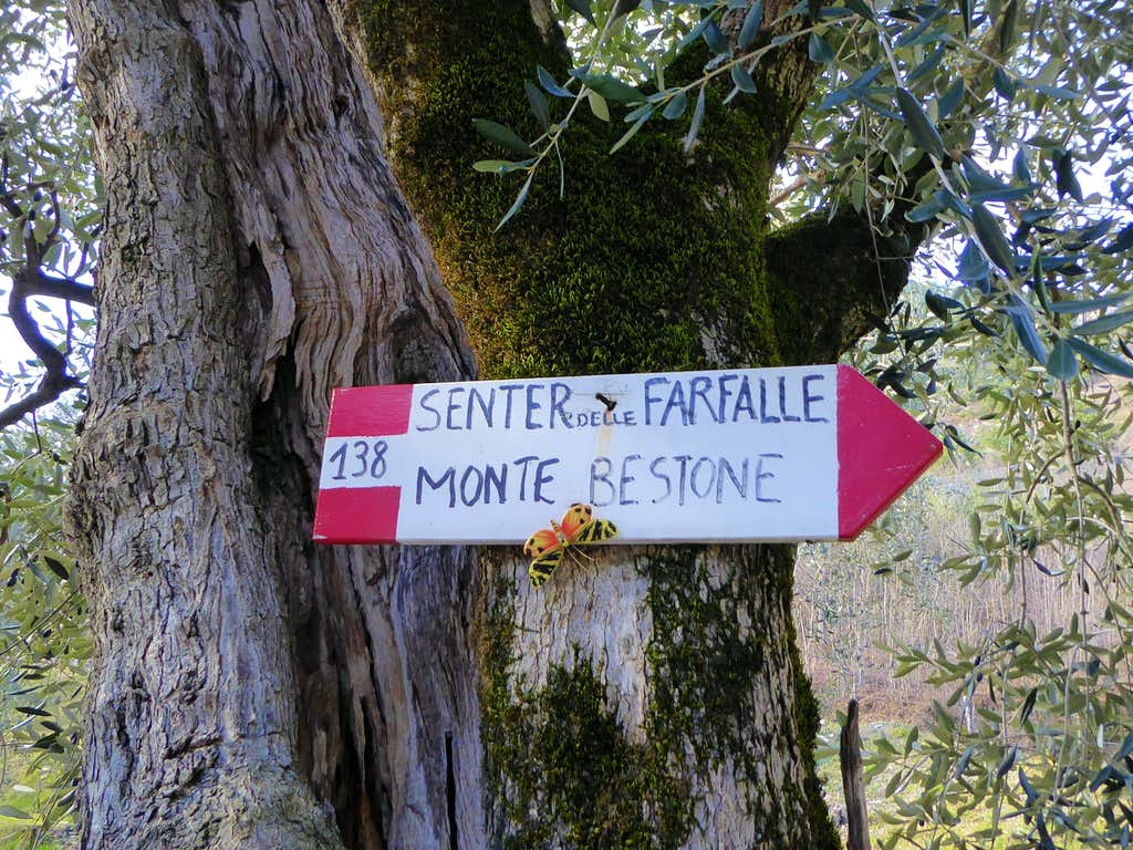 The signpost at the start of the Senter delle Farfalle
