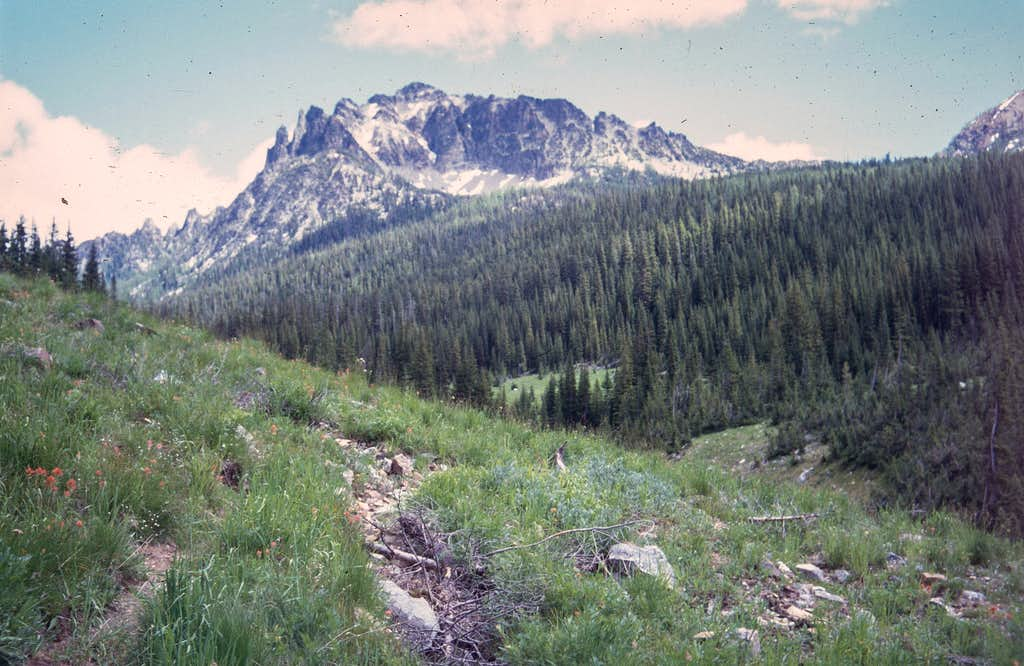 Saska Peak from the trail