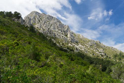 Puig de Galatzo