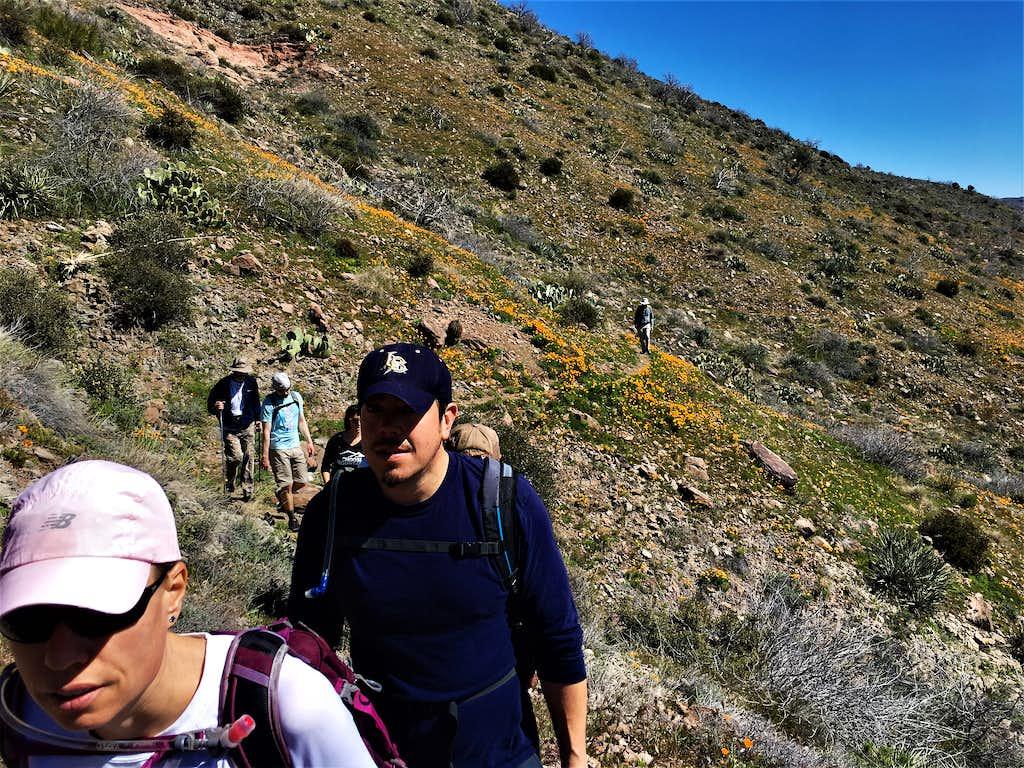 Group hiking along the Bronco Creek Trail