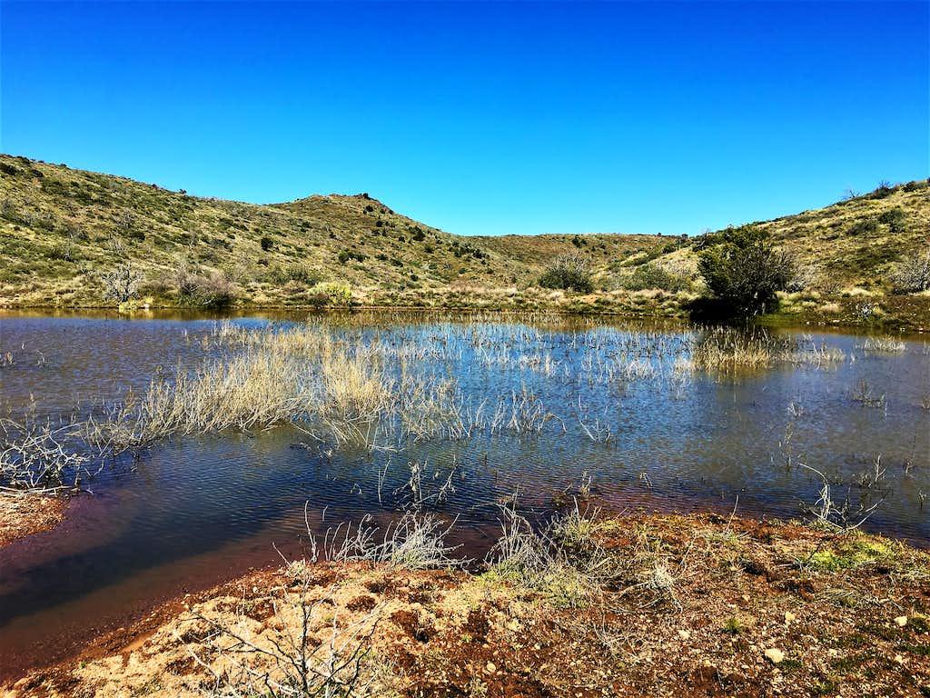 Pond along the Bronco Creek Trail