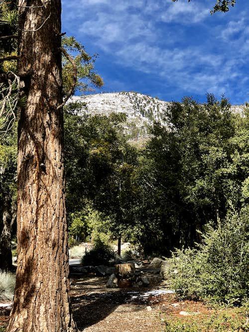Mt. Islip, 8250 feet, San Gabriel Mountains