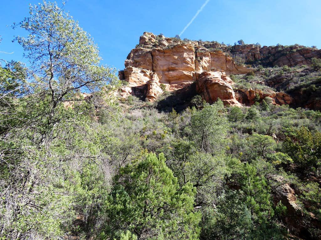 Mid trail