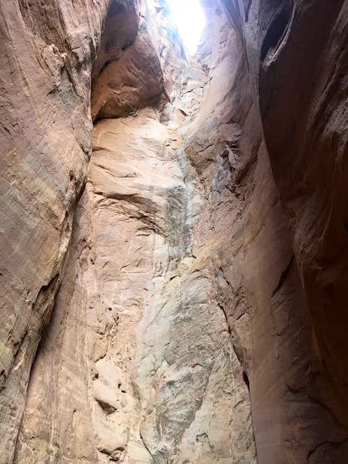 Snake Pit Canyon
