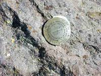 Survey Marker on top of...