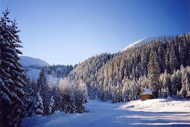 In Goryczkowa Valley under...