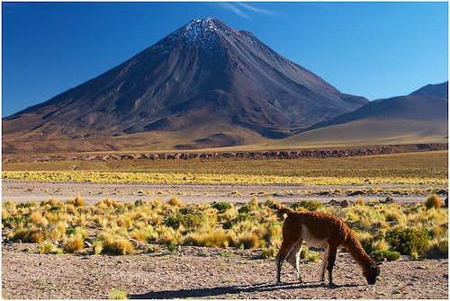 Licancabur as seen from Paso...