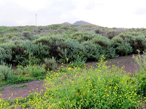 Valencia Peak from Trailhead