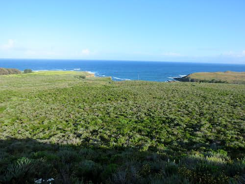 Pacific Ocean from lower trail