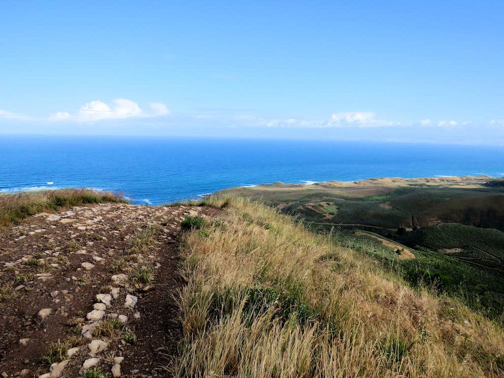 Ocean from the ridgetop