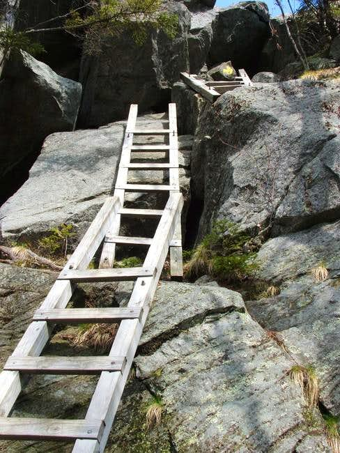 The ladder going up Mt....