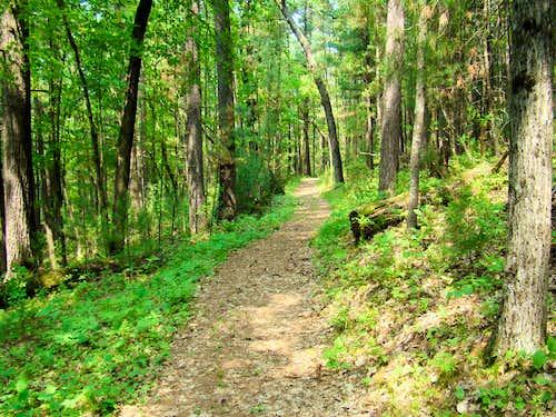 Castle Mound Nature Trail