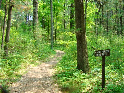 Castle Mound Overlook Trail Jct