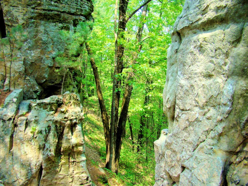 Castle Mound Ridge View