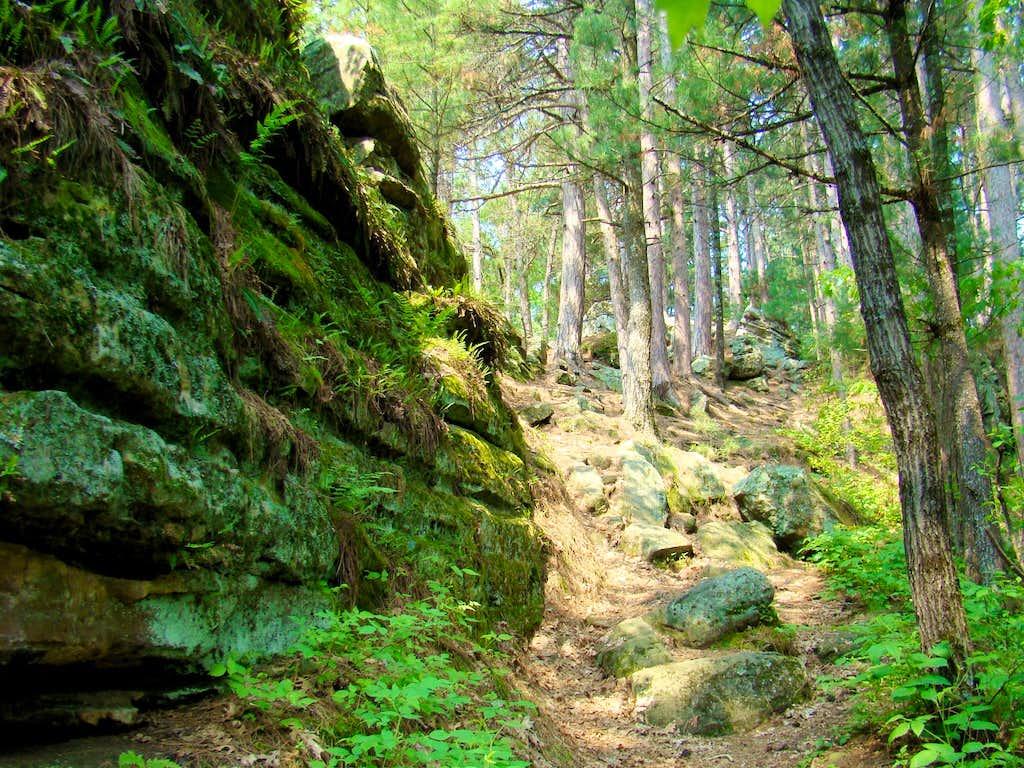 Castle Mound Trail