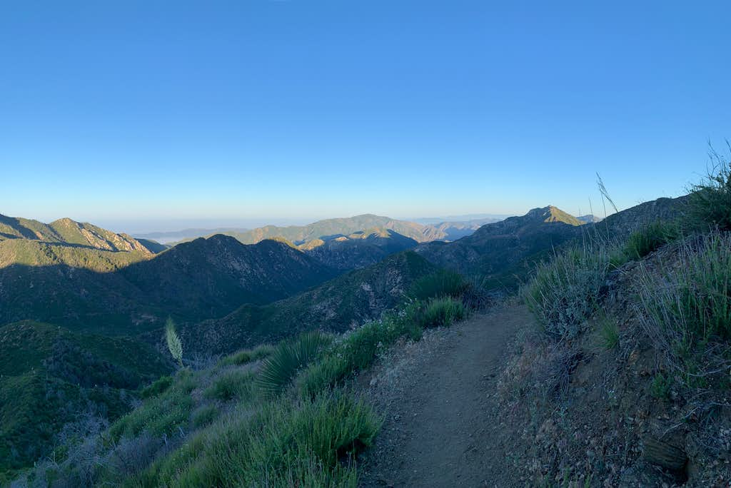 Mt Lukens as seen from trail to Strawberry Peak