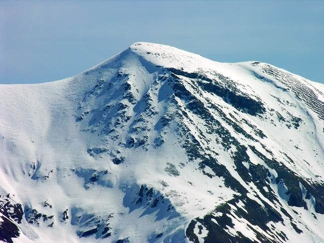 La punta Gianni Vert (3148...