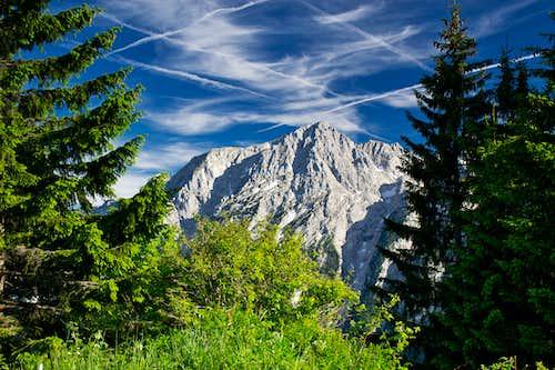 Hinteres Freieck (2309 m)