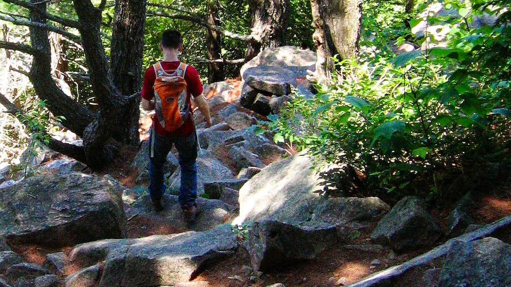 NY-ME Trip, Jun-Jul 10, 0977, Acadia NP, Hiking Down Cadillac Mtn
