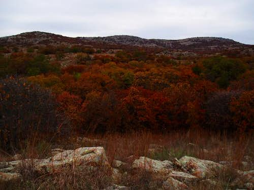 The fall colors of Mt. Wall -...