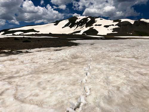 Long Trek Mountain