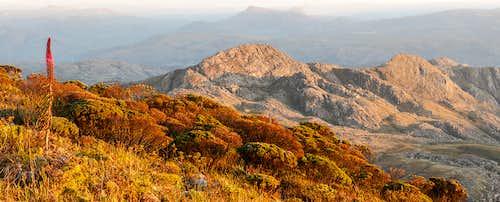 Pico do Itambé State Park/MG - Brazil