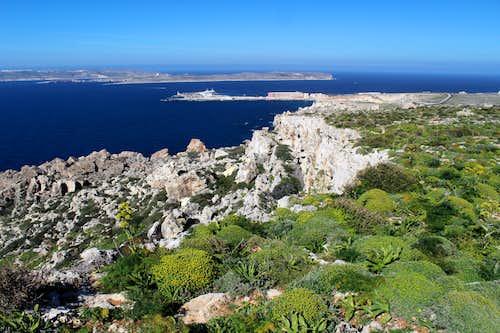 Marfa peninsula - Looking north towards Cirkewwa