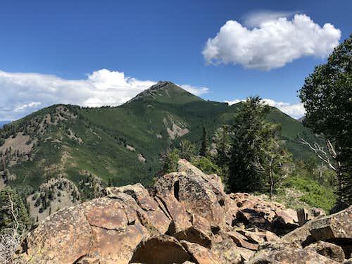 Mount Lamborn
