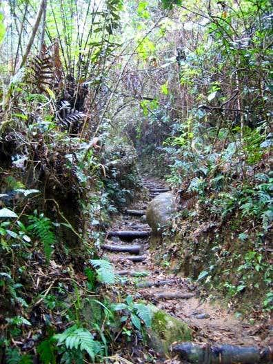 The trail goes through cloud...