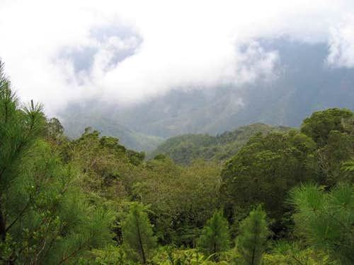 Cloud forests in Che...